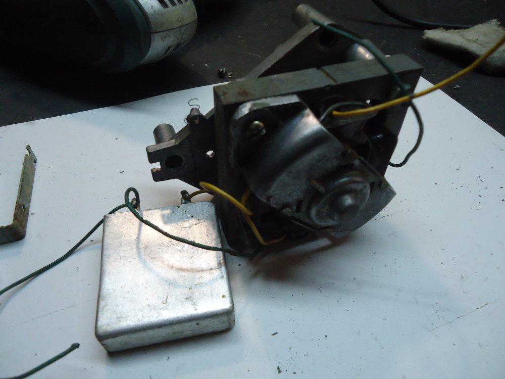 DSC02293.JPG