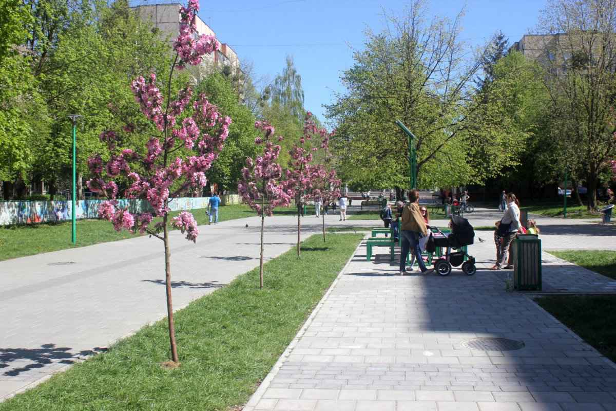 botsad_2018-04-22---magnolii 003-077.jpg