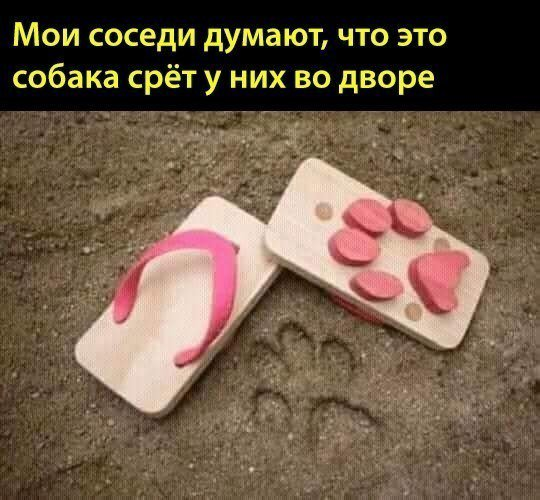 image (15).jpg